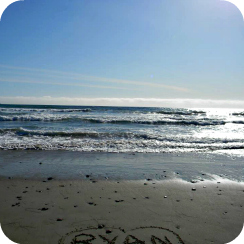 Beach-Ocean-Horizon.jpg