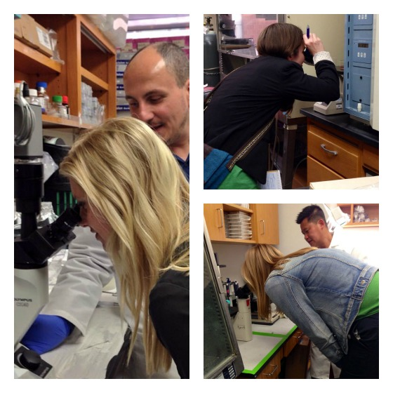 We did a lot of looking through microscopes