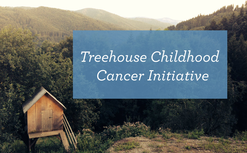 Treehouse Cancer Grants banner