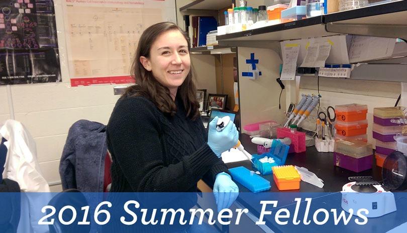 2016 Summer Fellows