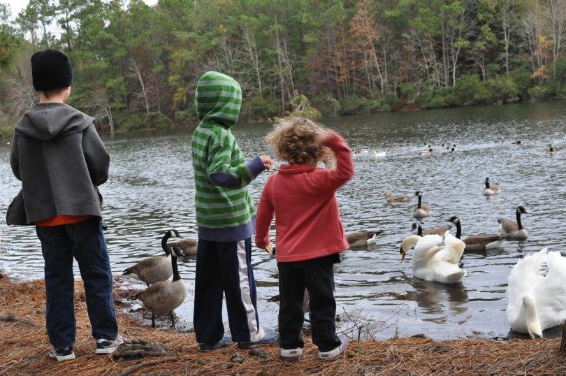 The Whitt siblings feeding geese at a campground in Savannah, Georgia