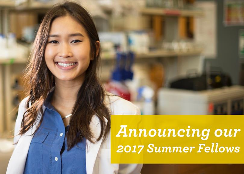 Summer Fellows 2017