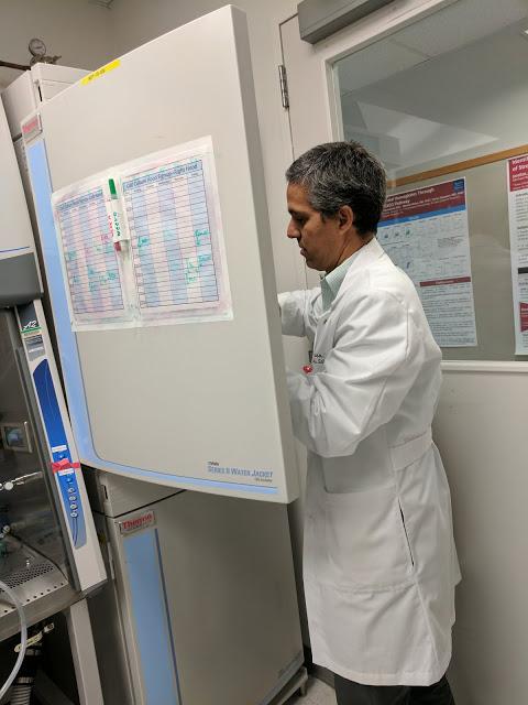 Dr. Nino Rainusso pulls samples from the incubator