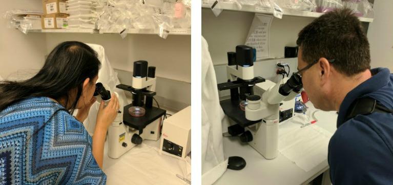 Judy and Harold Sanders look through microscopes