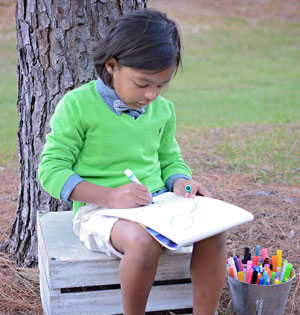 Ambassador Princeton coloring