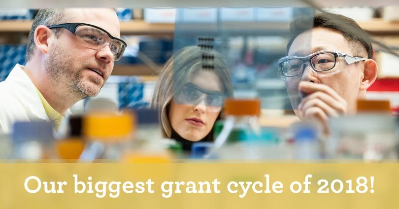 2018 grants
