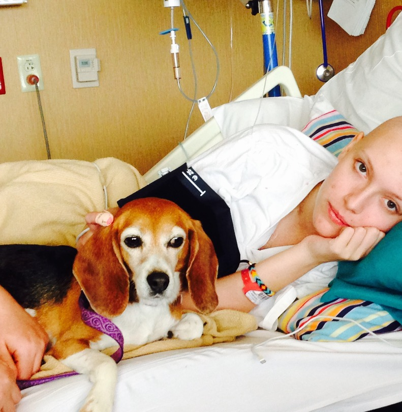 Zoe in her hospital bed with a beagle