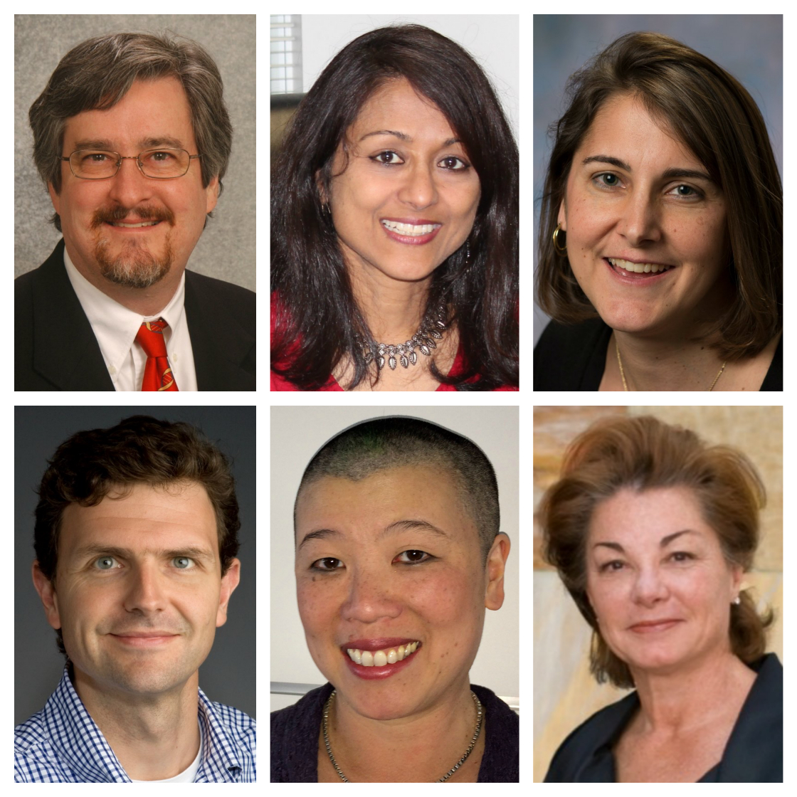 A collage of photos of the research team involved in Dr. Hunger's work