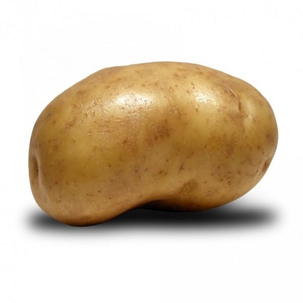 Love Potato Before