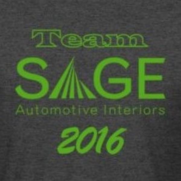 TEAM SAGE AUTOMOTIVE INTERIORS Team Logo