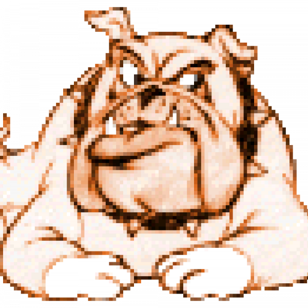 Bald Bulldogs Team Logo