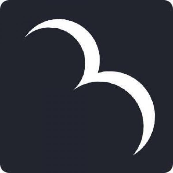 Bald Birds Team Logo