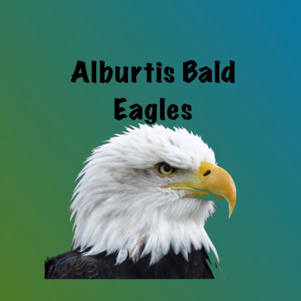 Alburtis Bald Eagles Team Logo