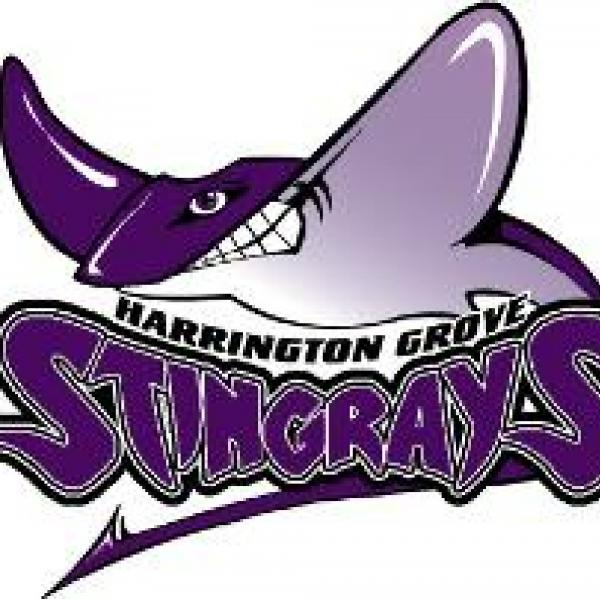 Swingrays Team Logo