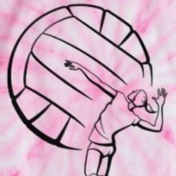 Mojo Risin Team Logo