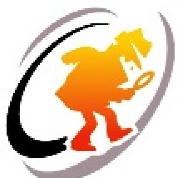 Assurance Investigations Team Logo