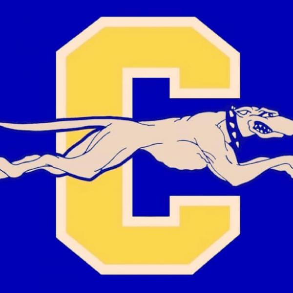 Carmel IceHounds Team Logo