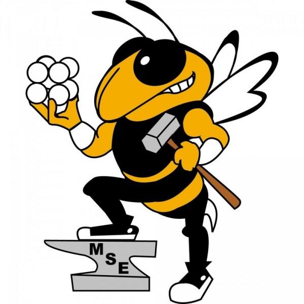 GT MSE Team Logo