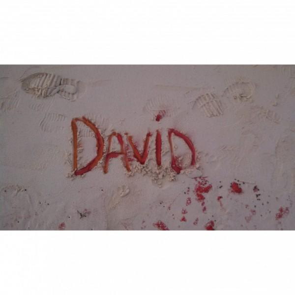 David's Warriors Team Logo